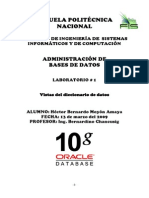 Diccionario de Datos Oracle 10g.pdf