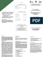 E323_Auditoria.pdf