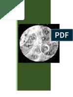 Patología leucocitaria, Word.docx