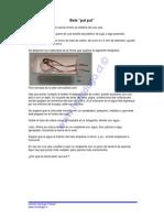 bote_put_put.pdf
