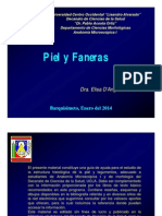 histologiapielyfaneras.pdf