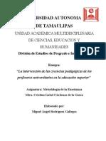 ensayo miguelito.doc