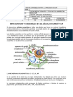 Estructurasyorganelosdelacelula_10_Bio.pdf
