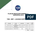 Plan de inducción general y específica TDM.pdf
