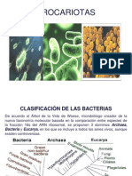 3.-procariotas.ppt