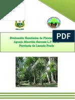 Evaluación Económica de Plantaciones de Aguaje Mauritia Flexuosa L