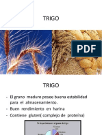 terc. clase.pdf