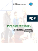 EXCELENCIA S. MANUAL.doc