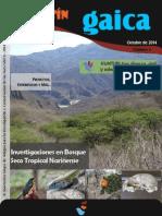 BOLETIN GAICA 5.pdf