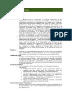desarrollo supervisorio.doc
