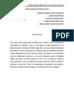 indicadores y entrevistas cecilia.docx