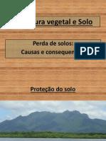 Cobertura_vegetal_e_Solo.pdf