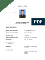 Hoja de vida ylder  2013.doc