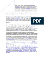 El caudillismo es un fenómeno político y social surgido durante el siglo XIX en Latinoamérica.docx