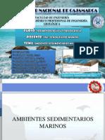 AMBIENTES SEDIMENTARIOS MARINOS.pptx