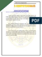 FISICA CURVAS EQUIPOTENCIELS.docx