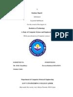 Praveen Report