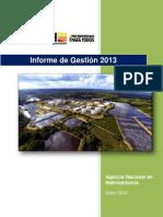Informe de Gestión 2013 Anh