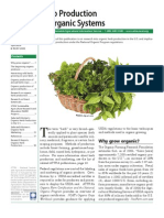 Herb Production Organic