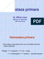 Hemostaza primara