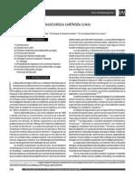 Mascarilla laringea.pdf