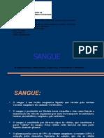 Sangue - Características quimicas.pdf