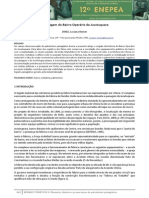 Artigo Luciana Nemer.pdf