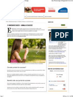21 Obiceiuri Sanatoase_ Jurnalul de Succese - Florin Rosoga