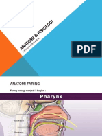 Anatomi & fisiologi tenggorok
