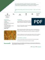 CALABACINES RELLENOS sin gluten y sin lactosa.pdf
