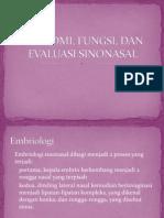Anatomi Sinonasal.pptx