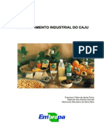 Beneficiamento do cajú.pdf