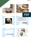 Ossos da cabeça.pdf