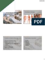 Introdução ao sistema osteomuscular – Cabeça e Pescoço.pdf