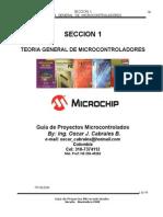 SECCION 1- TEORIA DE MICROCONTROLADORES NOV-2008.doc