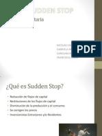 Teoría Monetaria sudden stop.pptx