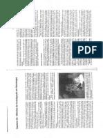 SOCIOLOGIA parte 6.pdf