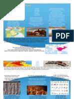ethnic brochure