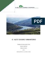 O  ALTO DOURO.doc