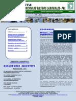 revista001_2013.pdf
