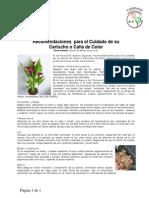 Cuidado_en_Casa_de_sus_Cartuchos_de_Colores_Callas.pdf