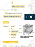 5A-2 Principles of Fingerprinting.pdf