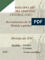 Neuro cap. 3 (revestimentos e medula).ppt