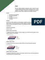Tecido Epitelial.docx