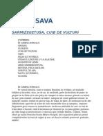 David_Sava-Sarmizegetusa__cuib_de_vulturi_1_0_10__.doc