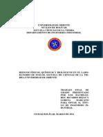 097-Tesis-Riesgos físicos, químicos y bi.pdf