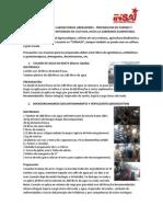 La Guarapera Red de Laboratorios  Corregida.docx
