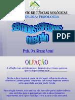 OLFAÇÃO.ppt