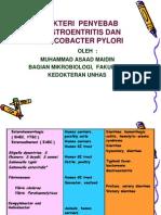 BAKTERI  GASTROENTERITIS+HP-UMI-OKTOBER-007