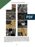80036364.2011_5.pdf